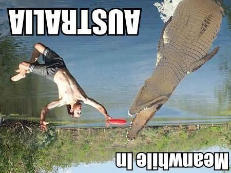 upsidedownaussie.jpg