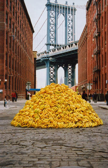 nyc_bananas_mar_05.jpg