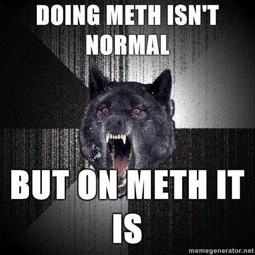 Insanity-Wolf-doing-meth-Isnt-normal-but-on-meth-it-is.jpg