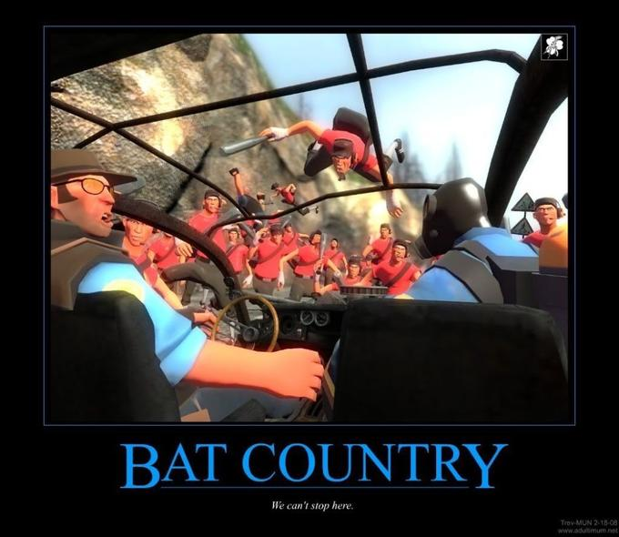 TF2_Demotivator_-_BatCountry.jpg