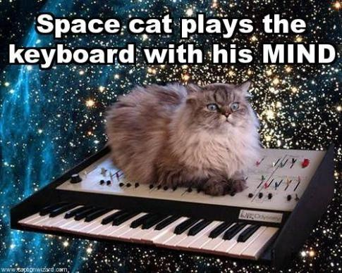 space-cat-plays-the-keyboard-w-462d0d771249811218.jpg