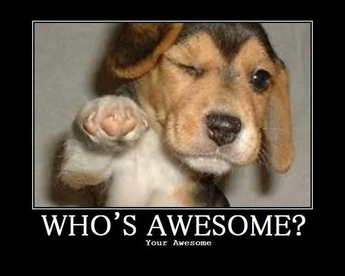 whos-awesome.jpg