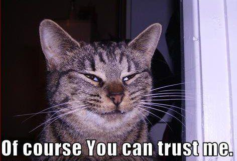 of_course_you_can_trust_me_trollcat.jpg