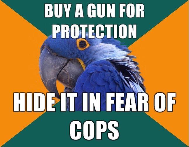 BUY-A-GUN-FOR-PROTECTION-HIDE-IT-IN-FEAR-OF-COPS.jpg