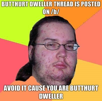 Butthurt-dweller-thread-is-posted-on-b-Avoid-it-cause-you-are-butthurt-dweller.jpg