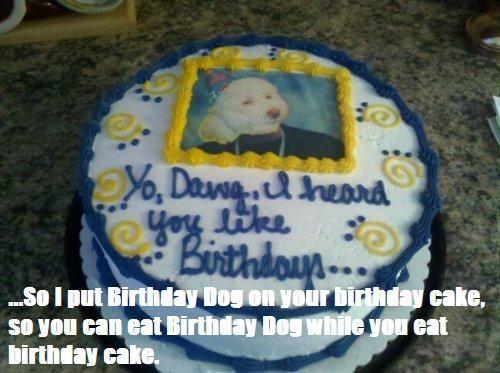 birthdaydogcake2.jpg