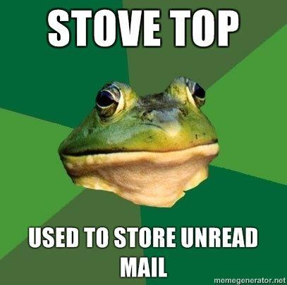 bachelor_frog_Stove-top-used-to-store-unread-mail.jpg