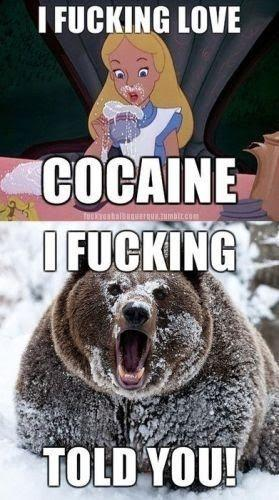 cocaine-bear-i-told-you-1138-1287528514-6.jpg