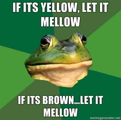 IF-ITS-YELLOW-LET-IT-MELLOW-IF-ITS-BROWNLET-IT-MELLOW.jpg
