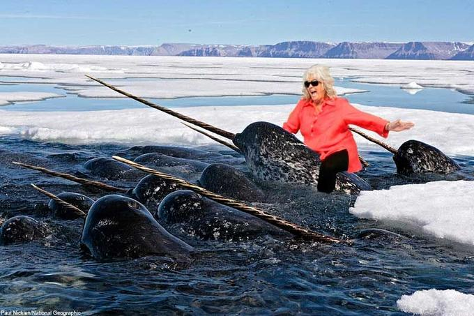 Paula-and-narwhal.jpg
