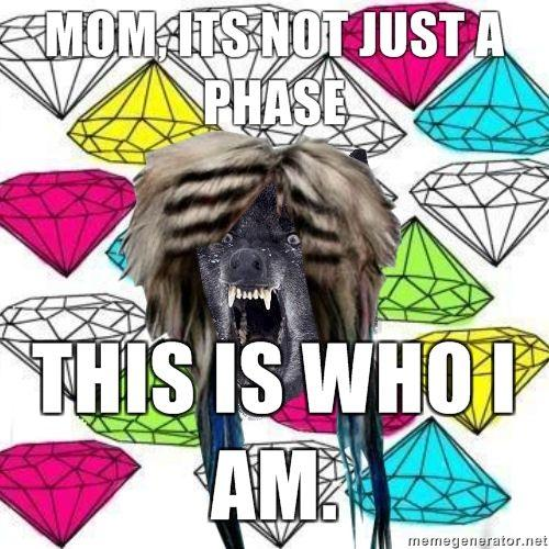 MOM-ITS-NOT-JUST-A-PHASE-THIS-IS-WHO-I-AM.jpg