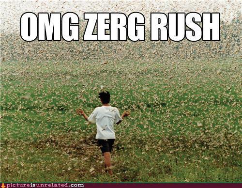 omg-zerg-rush.jpg