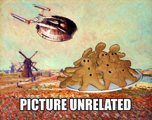 Picture_unrelated_enterprise_cookies_Holland.jpg