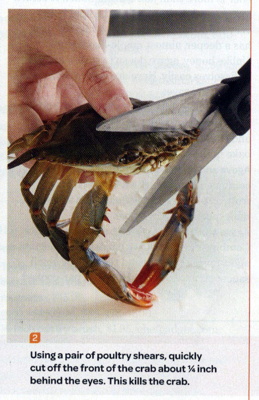 This Kills The Crab | Know Your Meme