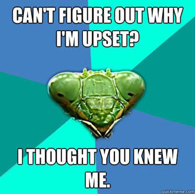 mantis-upset.jpg