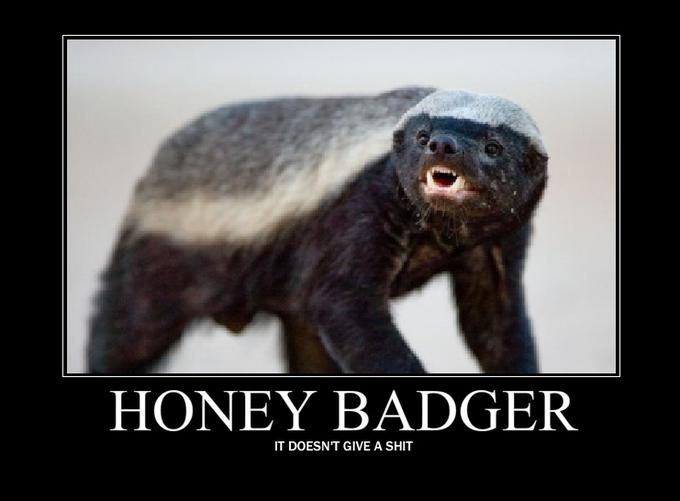 honey_badger_by_twiggeh_leaf-d3aqp0j.jpg