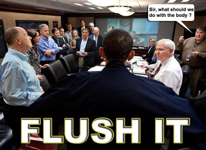 flushit.jpg
