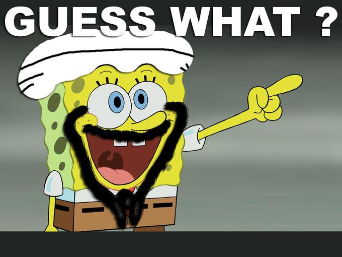 guessswhatsponge2.jpg
