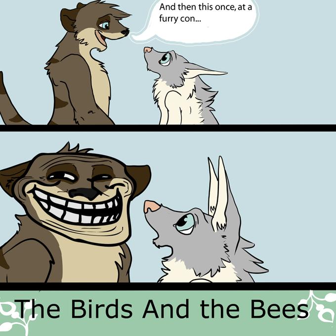 birdsbeeskym.png