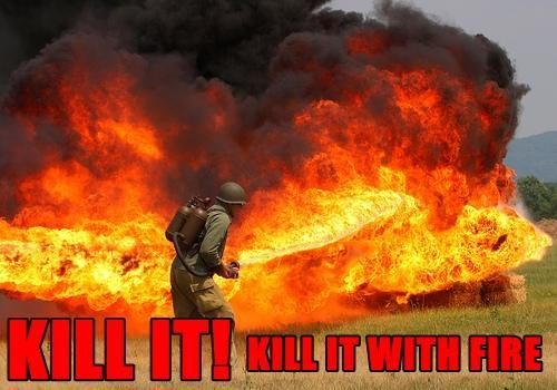 KILL-IT-WITH-FIRE-FUNNY-FORUM-PICS.jpg