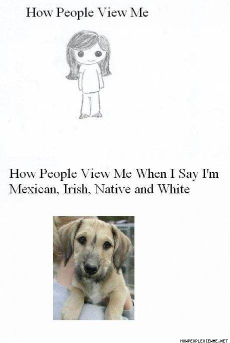 How_People_View_Me_When_I_Say_I_m_Mexican__Irish__Native__And_White.jpg