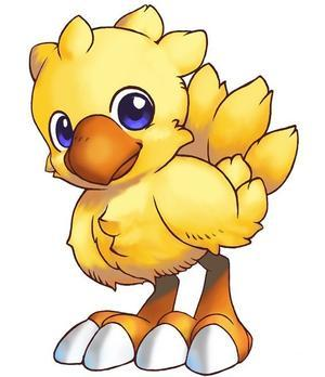 535395-chocobo_baby_large.jpg