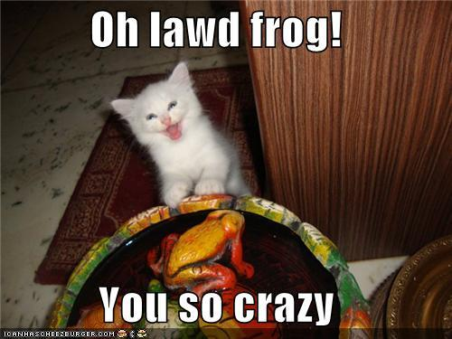 funny-captions-how-did-you-get-so-crazy-frog.jpg