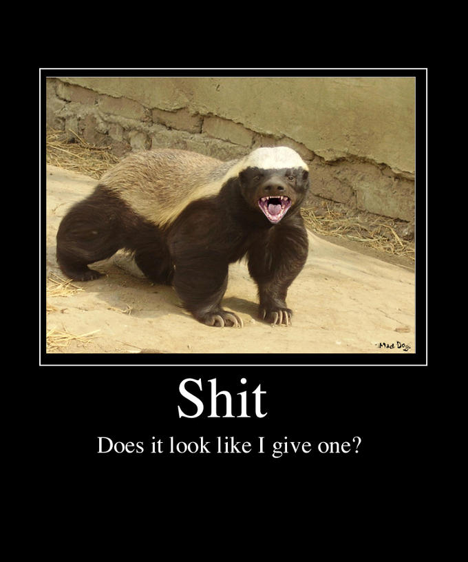 honey-badger-poster.jpg