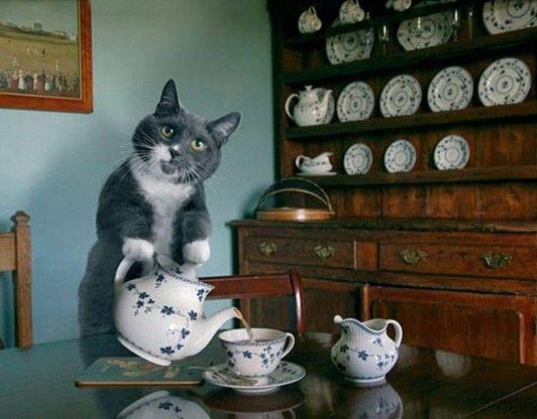 Tea_Party.jpg