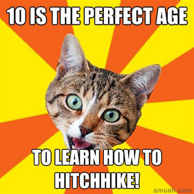 advice-cat-smosh-hitchhike.jpg