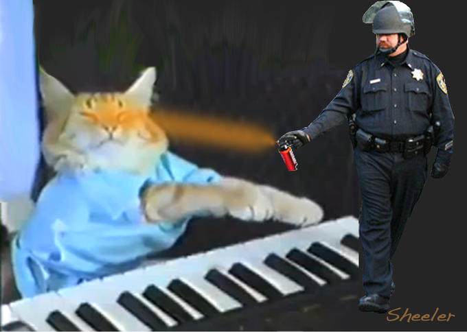 PeppersprayKBCat.jpg