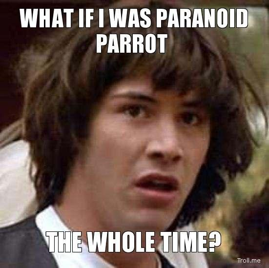 what-if-i-was-paranoid-parrot-the-whole-time.jpg