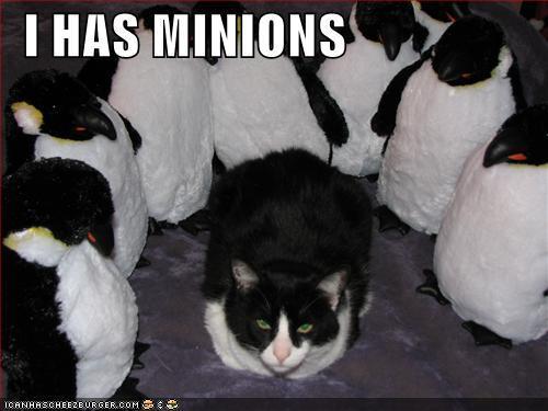 i-has-minions.jpg