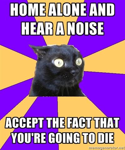 anxiety-cat-home-alone-and-hear-a-noise.jpg