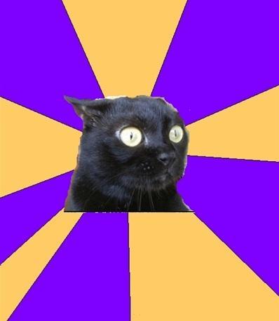 anxiety-cat.jpg
