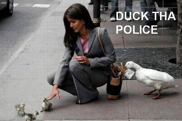 DUCK THA POLICE