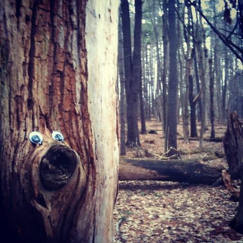 http://eyebombers.com/post/19234221044/woodsbomber-by-listless-lee-usa?56fe80e8