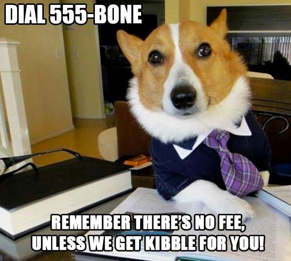 Dial 555-BONE