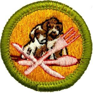 Obama Merit Badge