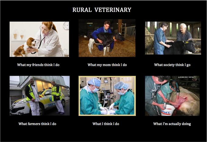 Rural Veterinary