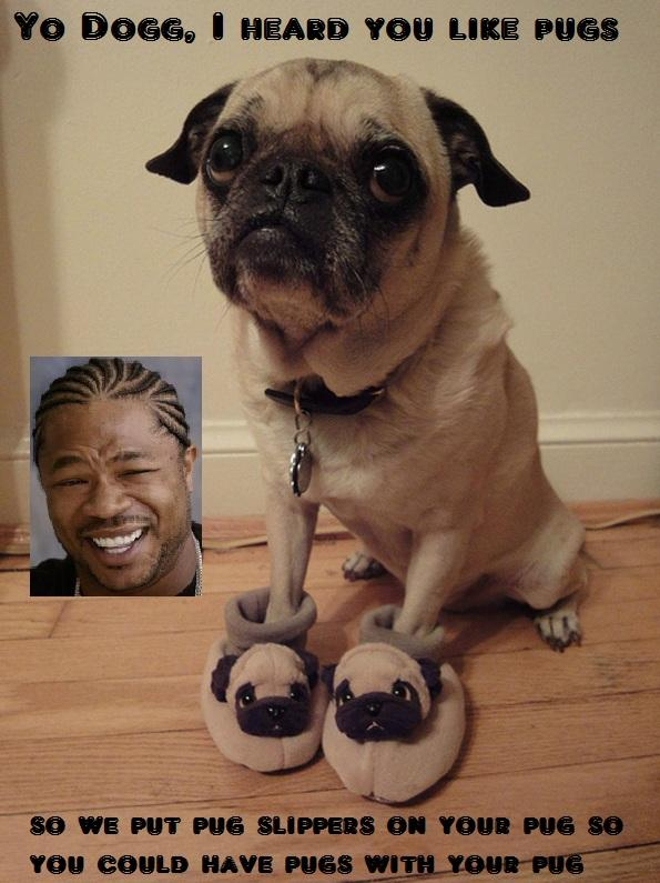 Xzibit Yo Dogg Pug Slippers