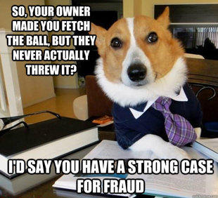 Lawyer Dog - Ball