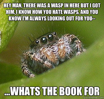 spiders misunderstood appreciated qualities friends