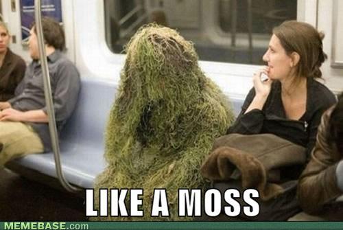 Like A Moss