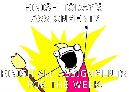 One assignment? ALL of them!