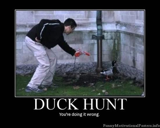 duck hunt IRL fail