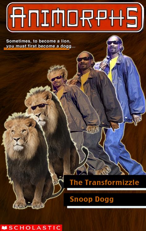 The Transformizzle
