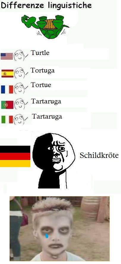 Differenze Linguistiche Turtle!