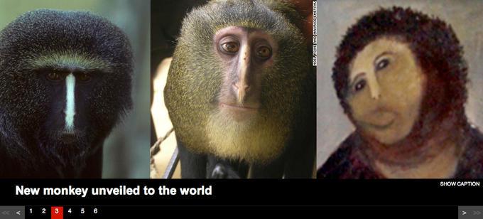 Ecce Monkey
