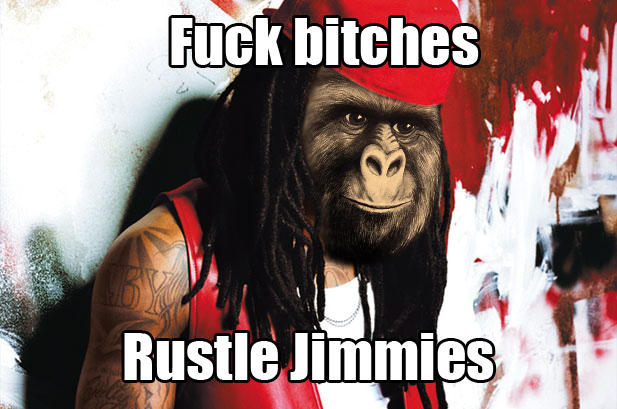 Fuck bitches, rustle jimmies
